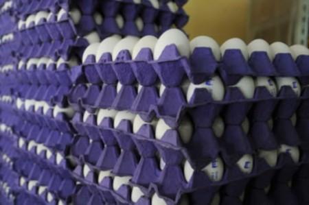 Profeco sanciona a 143 pollerías y expendios de huevo