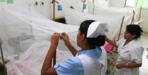 Chikungunya-en-Chiapas-021214-560x320