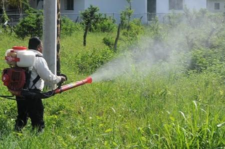 Llevarán a cabo acciones contra dengue, zika y chikungunya