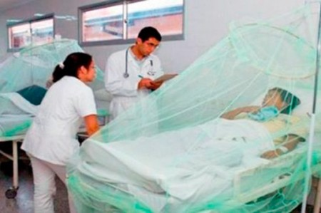 Mueren 4 personas a causa de chikungunya