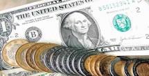Cierra dólar en $22.25, nuevo máximo histórico