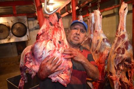 Carne de caballo no representa riesgo sanitario