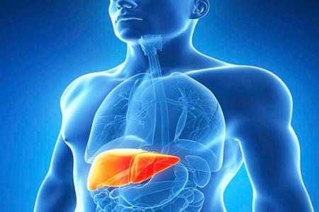 Hepatitis C se contrae por sexo sin protección y transfusión sanguínea