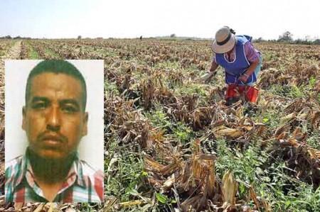 Cae azote de agricultores en Soto la Marina