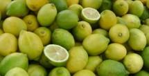Limón baja tras cuatro semanas al alza