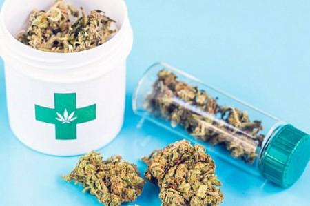 Uso medicinal de marihuana hasta 2017: César Camacho