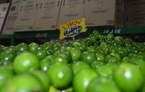 Profeco emite 90 requerimientos por aumentos del aguacate y limón