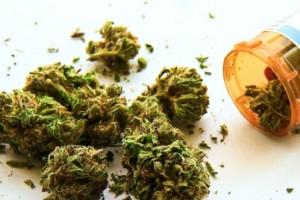 Niegan amparo a empresa que pretendía usar marihuana con fines medicinales