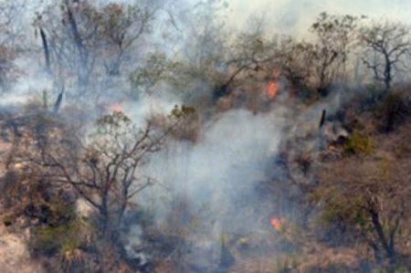 Incendio en California consume dos mil 400 hectáreas
