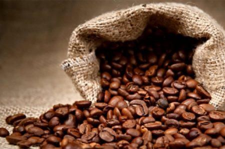 Diputados se comprometen para impulsar cultivo de café