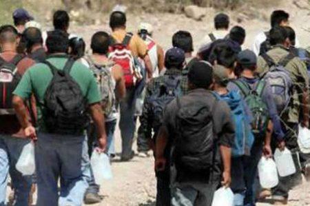 Aseguran a 71 migrantes en Sonora y detienen a 5 sujetos
