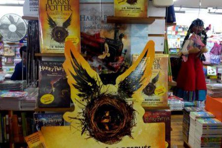 Harry Potter encanta a sus seguidores en español