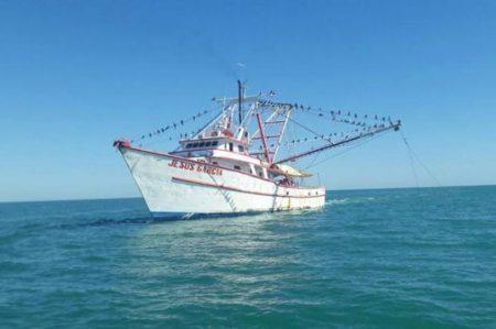 Aseguran buque en área de protección de la vaquita marina