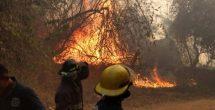 Alertan por incendio activo en cerro de Acapulco
