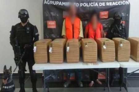 Hallan casi 1.5 toneladas de droga con ayuda de perros en Coahuila