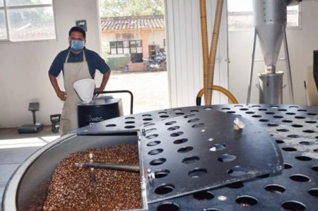 Café orgánico zapoteca, de México para Europa