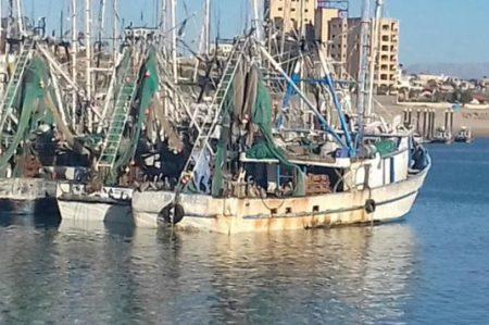 Aseguran tres embarcaciones por pesca ilegal en Golfo de California