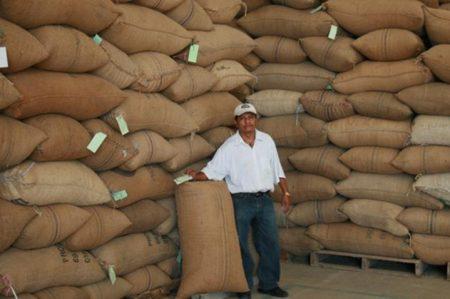 Café orgánico de Chiapas