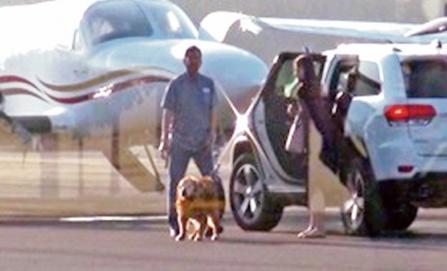 Gobernador de Chihuahua viajó hasta con su perro