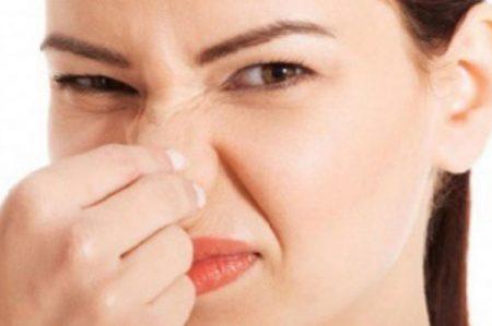 EME: 6 Tips para librarte de los malos olores en casa