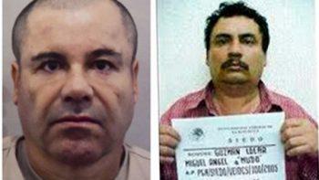 Sale de prisión hermano de 'El Chapo'