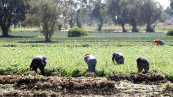 Perjudicial, imposición de aranceles a México en TLCAN, advierte FMI