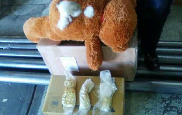 Policía Federal halla droga sintética dentro de oso de peluche