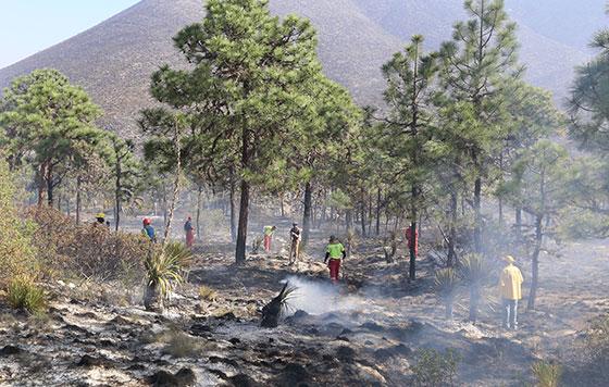 3 incendios activos en Veracruz