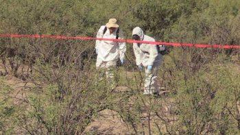 Hallan 5 cuerpos decapitados en carretera de Veracruz