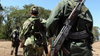 FARC: ONU tiene en su poder 2.230 armas de guerrilleros