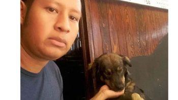 Perra sin hogar es defendida por dueño de restaurante en Oaxaca