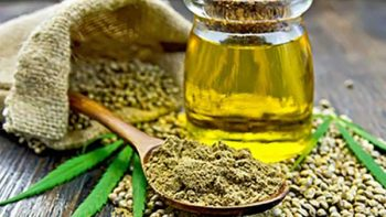 Uso medicinal de mariguana, oportunidad de vida a pacientes epilépticos