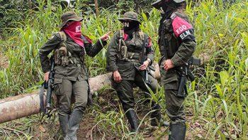 Rebeldes colombianos liberan a periodistas holandeses