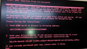 Un nuevo virus cibernético desquicia Europa