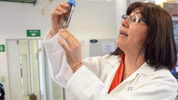 Estudian en la UNAM bacterias que degradan hidrocarburos