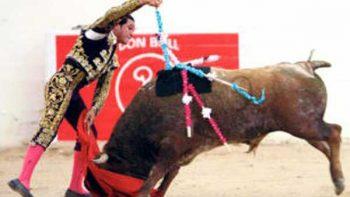 Corridas de toros sin sangre ni muerte son posibles