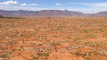 Sequías y tornados se generan en México por cambio climático