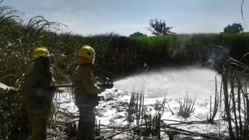 Controlan incendio en ducto de Pemex en Veracruz