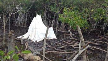 Interpone Profepa 12 denuncias penales por relleno de humedales