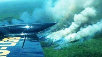 Incendio afecta 500 hectáreas de reserva ecológica en Yucatán