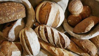 ¿Cómo llegó el pan a México?