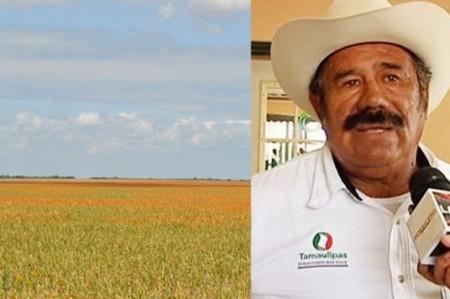 Campesinos esperan tener buena cosecha en la frontera