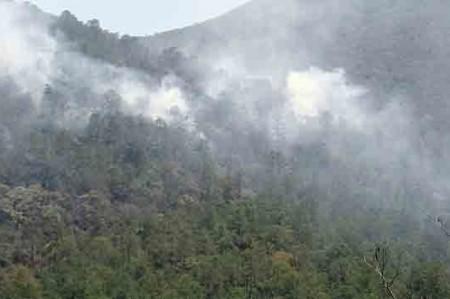 Incendio forestal en Hidalgo afecta más de 150 hectáreas