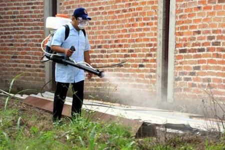 A limpiar cacharros para evitar dengue y chikungunya: IMSS