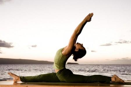 Yoga, disciplina ancestral que calma bestias