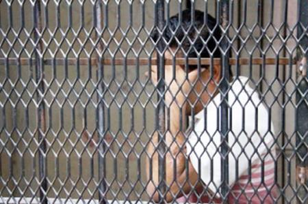 Detienen a presunto corruptor de menores en Güémez
