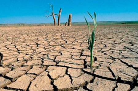 Sequía en México, más por actividades agrícolas que a falta de lluvias