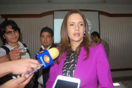 Presenta Clara Luz modelo de seguridad