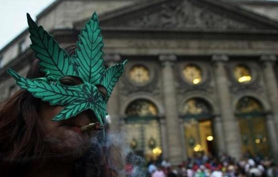 Cofepris adelanta negativa a solicitudes para uso lúdico de marihuana