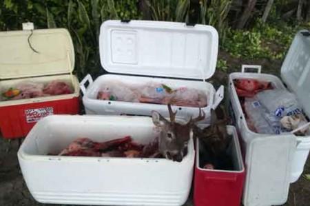 Caen cuatro cazadores ilegales de venados
